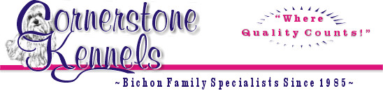 "Cornerstone Kennels: Bichon Family Specialists Since 1985  ""Where Quality Counts!"""